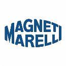 magnetii