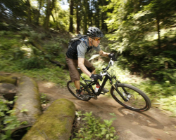 specialized-trail-crew-free-bike